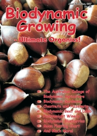BD Growing Issue Cover 28